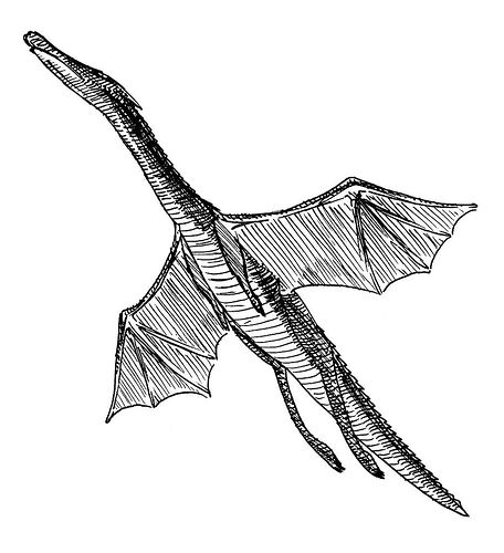 Dragon, 1989