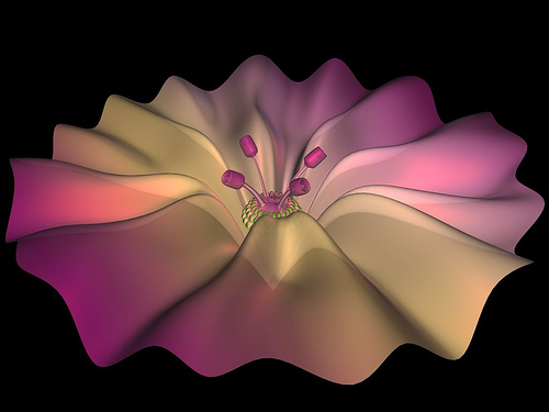 First HyperNURBS: A Flower