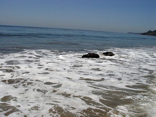 Malibu 17 May 2008 / Rocky