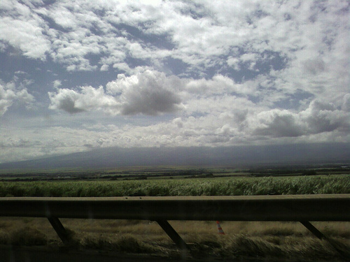 The Land, headed Upcountry on Maui