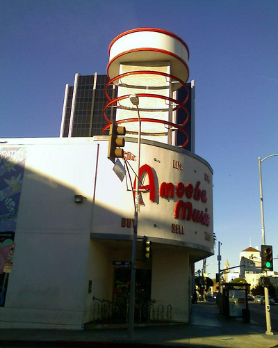 Amoeba in the Morning